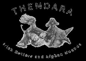 Thendara Logo